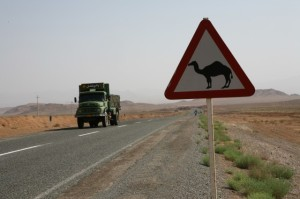 iran_camelsign.jpg