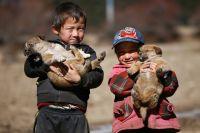 Tibet-2_20.jpg